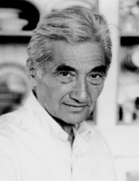 zinn howard the bomb 'if you're intending to bomb a country, you don't announce it for three years' zidar: the historian howard zinn believes you're one of the greatest american historians however neither the journal of american history, nor reviews of american history, nor the american historical review has reviewed.